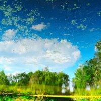 Облака в реке :: Андрей Щетинин