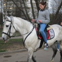 На белом коне :: Дмитрий Никитин