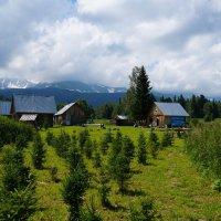 в горах :: Alexandr Staroverov