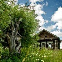 Заброшенный дом :: Валерий Толмачев