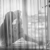 Материнская любовь :: Елена Верзун