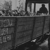 Поэзия :: Ольга Нарышкова
