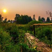 Хорошо в деревне летом :: Владимир Голиков