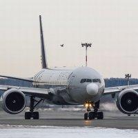 Ворона тоже самолет :: Наталия Женишек