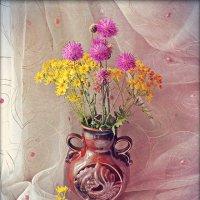 Полевые цветы июля :: Николай Белавин
