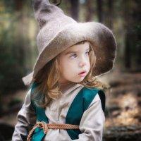 Волшебный гномик Владушка :: Елена