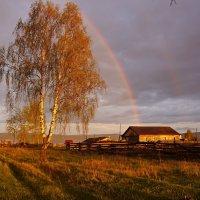 Вечерний дождик :: Галина Подлопушная