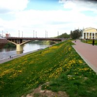 Жёлто-зелёный - в тренде :: Галина Бобкина