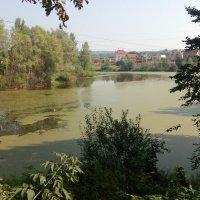 Река Курумка :: Александр Алексеев