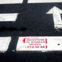 Объявление на дороге :: татьяна