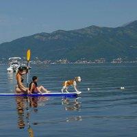 Двое в лодке не считая собаки :: Михаил Рогожин