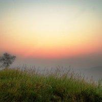 перед восходом солнца.. :: юрий иванов