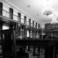 В храме знаний ... :: Лариса Корженевская