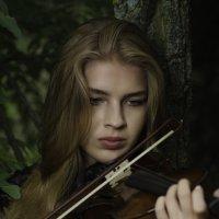 Мелодия :: Дмитрий Макаричев