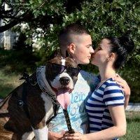 Собака и её семья :: VikTori Knyazeva