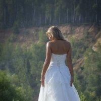 Сбежавшая невеста :: Дмитрий Вдовин