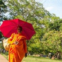 Монах в шри-Ланке :: Василий Игумнов