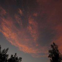 Волшебное небо июля... :: Павел Зюзин