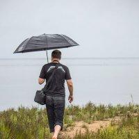 Идущий под зонтом. :: Александр Лейкум
