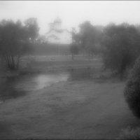 Туман :: galina bronnikova