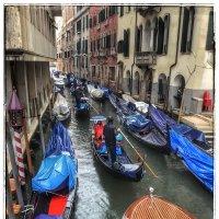 Пробка из гондол на канале в Венеции :: Николай Милоградский