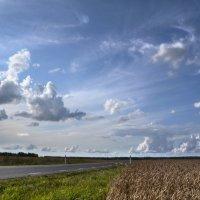 Дорога номер 103, Эстония :: Priv Arter