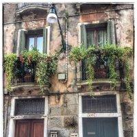 Обычный дом рядового жителя Венеции :: Николай Милоградский
