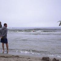 -на берегу пустынных волн стоял он, дум высоких полн... :: СветланаS ...