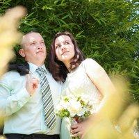 Свадьба Наташи и Коли :: Екатерина Гриб