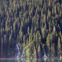 Водопады :: Sergei Khandrikov