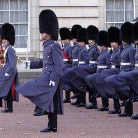 Церемония смены  караула у Букингемского дворца в Лондоне. :: Ольга