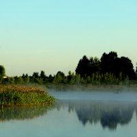 Пейзаж :: Андрей Струков