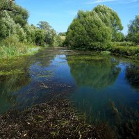 Река Тарадея :: Юрий Морозов