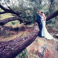 Свадьба :: Александр Сутула