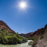 горячее солнце пустыни :: человечик prikolist