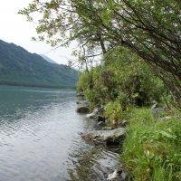 Мультинское озеро, Алтай :: Елена Коробейникова