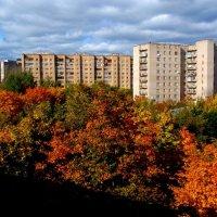 Осень :: Таня Смирнова