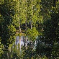 Лето. :: Igor Yakovlev