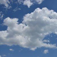 Облачный дракон)) или голова яги)) :: Александр Кузин