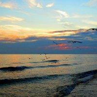 закат на море :: Александр Cоловей