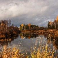 Осень на Катанге 1 :: Николай Андреев