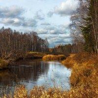 Осень на Катанге :: Николай Андреев