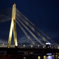 Вантовый мост :: Eugene Ger