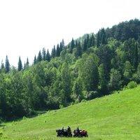 На подъеме на Сыркашинскую гору :: Светлана Ковалева