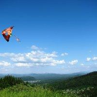 Вид с Сыркашинской горы :: Светлана Ковалева
