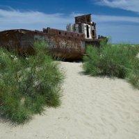 Кладбище кораблей 2 :: Александр Ан