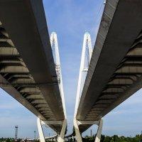 вантовый мост :: ник. петрович земцов