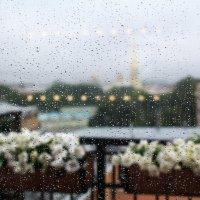 дождь :: Александра Реброва