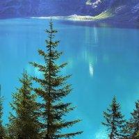 остроконечных елей ресницы над голубыми глазами озер :: Elena Wymann
