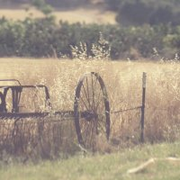 rural :: valeko